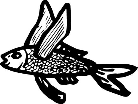 魚屋とび魚